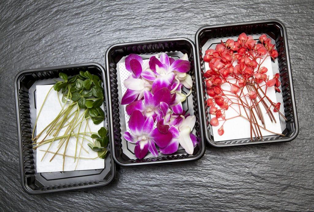 Devorar la imagen de contenido de la flor