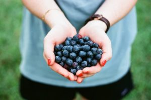 Person holding Berries in his hands