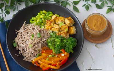 Soba-with-tempeh-bowl.jpg-1