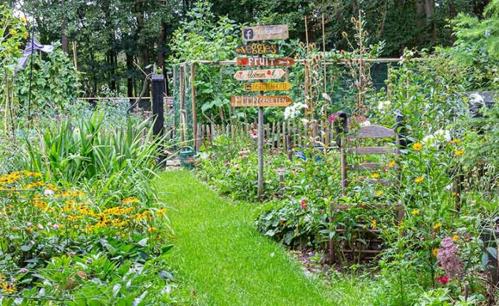 The-Bounty-of-Summer-Gardens-21