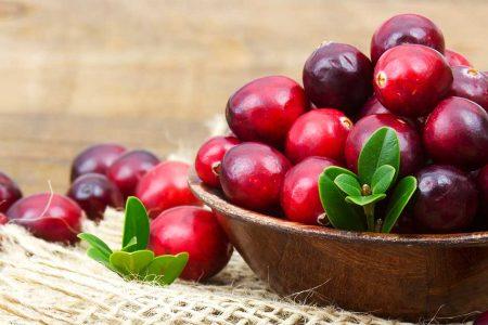 cranberry3
